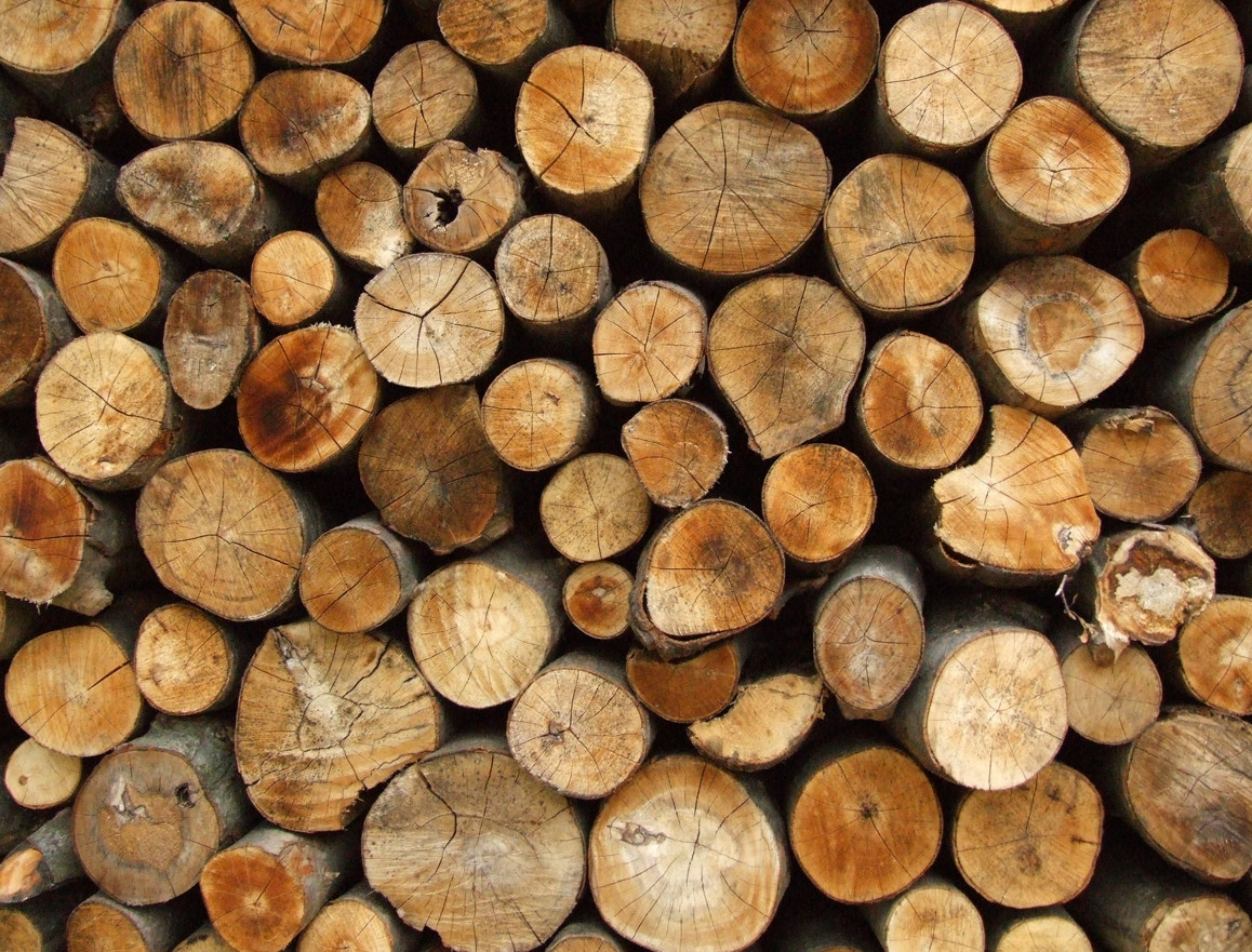 firewood11